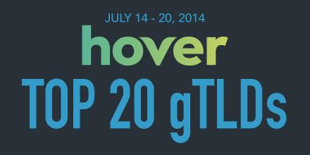 Top 20 gTLDs
