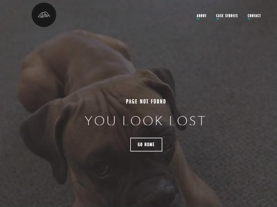Spry Website