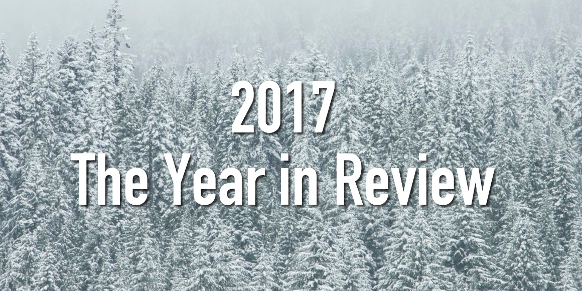 2017 the year in review